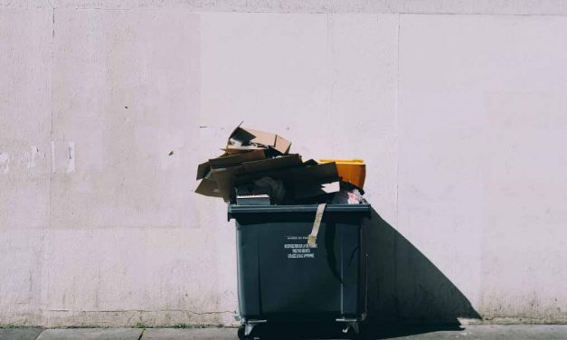 THE IMPORTANT DIFFERENCES BETWEEN COMPOSTING, RECYCLING + UPCYCLING