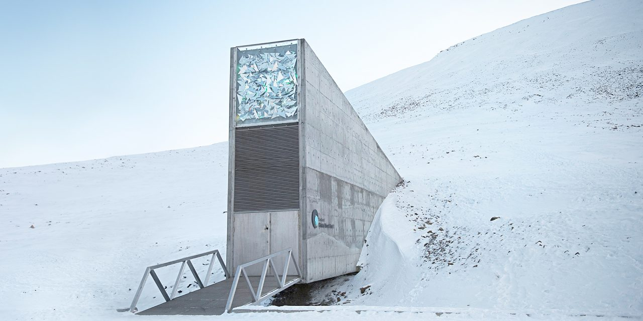 This global seed vault could be humanity's best insurance against extinction
