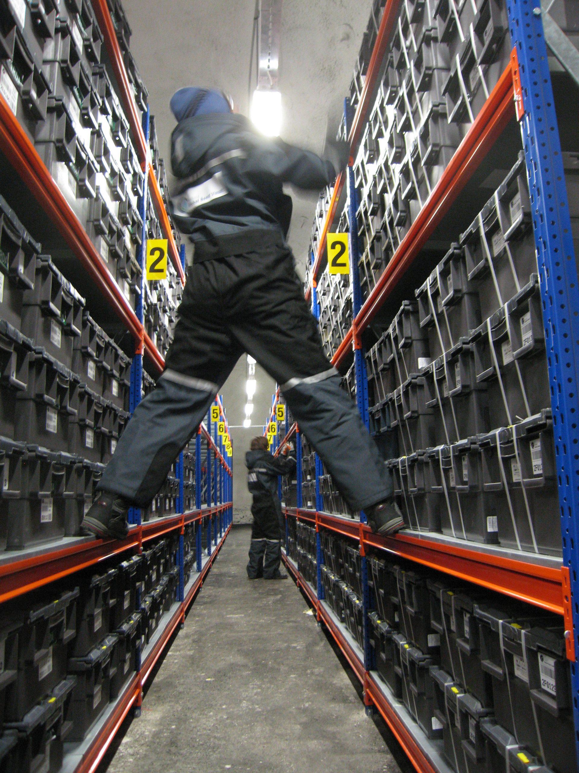 Man arranging black boxes on shelves in Svalbard vault