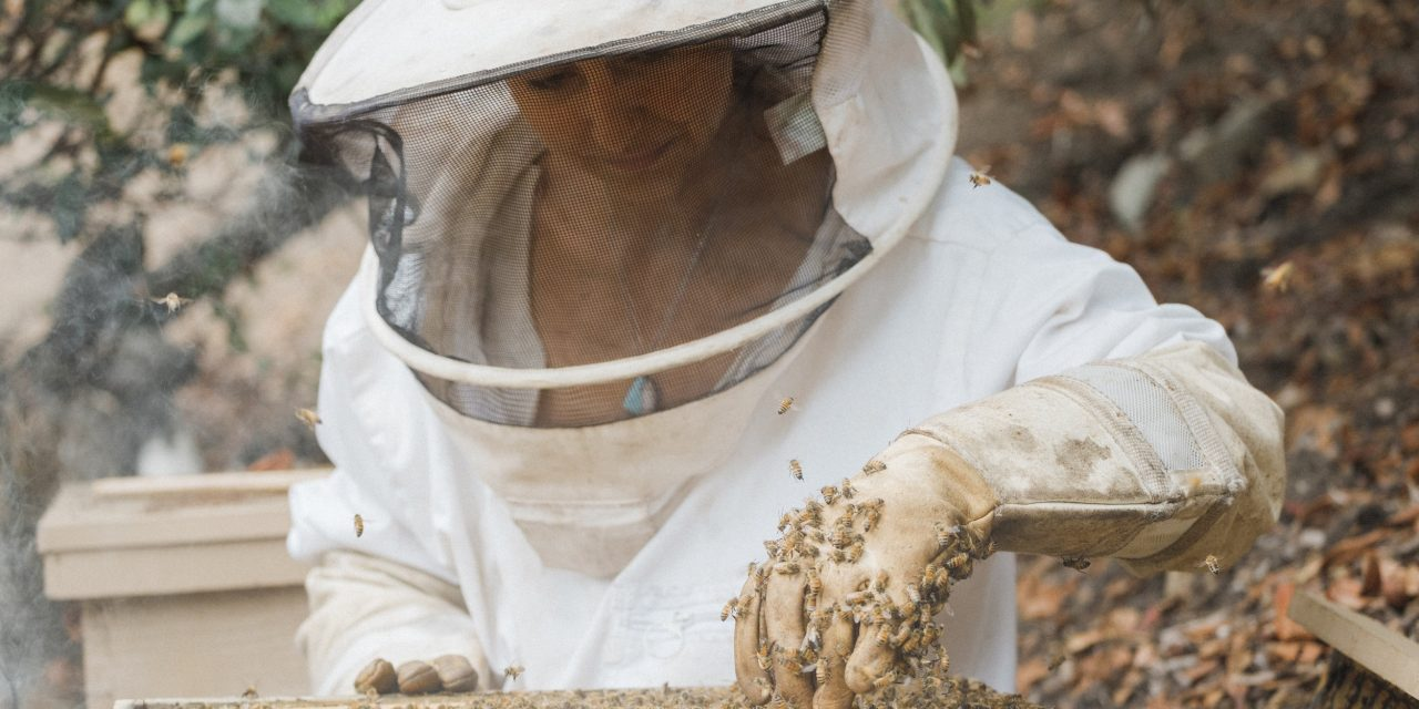 ANNA MARIA DESIPRIS IS A BEEKEEPER, HERBALIST, DOULA, PROFESSOR AND FARMER.